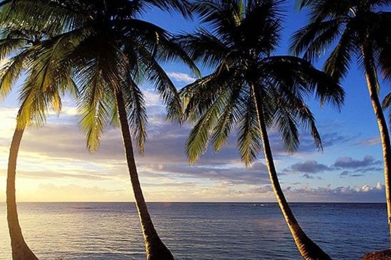 EmpatLangkah Sukses Pemda Menarik Investor ke Pulau Nias